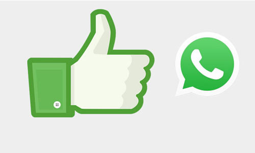 Aplicativo WhatsApp Android